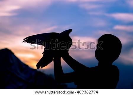 Silhouette of a boy holding a bird. Dove. Sunset sky. - stock photo
