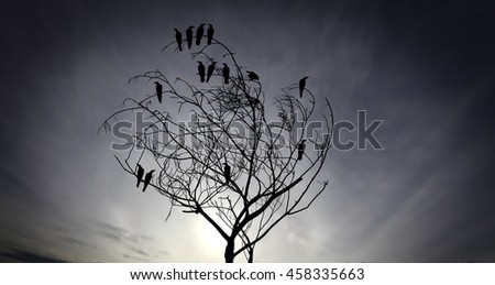 Silhouette of a flock of raven perching on a barren twisted tree against a surreal apocalyptic sky for the concept: social grapevine.