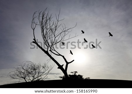 Silhouette of a gnarly dead tree on a hilltop with flock of birds flying against a surreal blue sunset. - stock photo