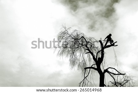 silhouette of a lumberjack with a chainsaw - stock photo