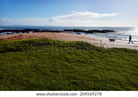 Silhouette of a man walks his dog on the beach. Concept photo of freedom , retirement, lifestyle, men,. - stock photo