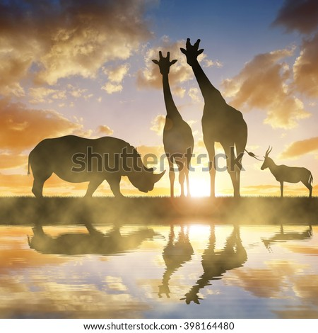 Silhouette of a Rhino with Giraffes and Antelope at sunset - stock photo