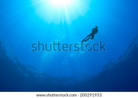 Silhouette of a Snorkeller with sunbeams behind