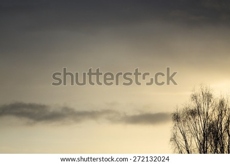 silhouette of a tree against  sky - stock photo