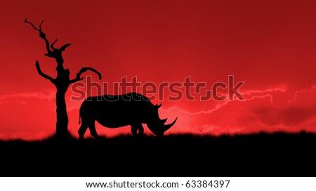 silhouette of african white rhinoceros against orange dusk dawn sky, tree - stock photo