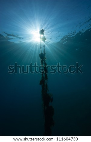 Silhouette of an underwater rope and buoy with a sunburst behind - stock photo