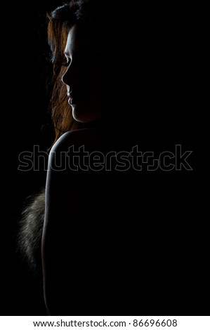 silhouette of beautiful sexy girl in fur on black - stock photo