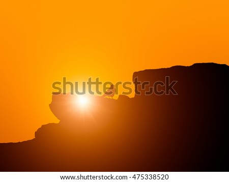 Silhouette of bird on rock mountain in sunset