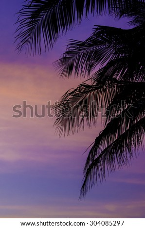 Silhouette of coconut trees with twilight sky background