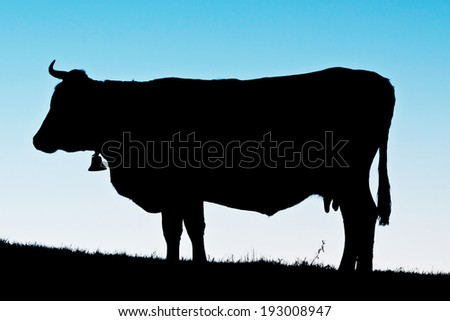 Silhouette of cow at dawn
