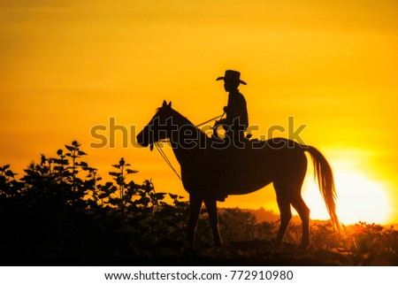 Silhouette of cowboy riding a horse.