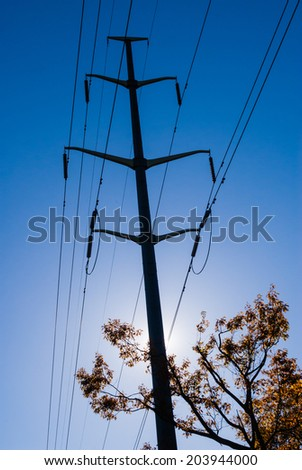 Silhouette of electrical tower and tree branch against sun. - stock photo