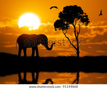 Silhouette of elephant. Element of design. - stock photo