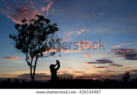 Silhouette of farmer playing with pet in evening time. harvesting and agriculture conceptual background. dark twilight time.