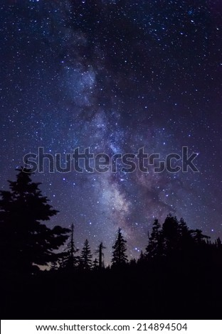 Silhouette of giant evergreen trees in front of the Milky Way at Glacier Point in Yosemite National Park - stock photo