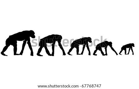 Silhouette of monkeys on the chain gang. - stock photo