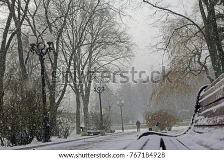 silhouette of one person walking on a beautiful, winter park during a heavy snowfall