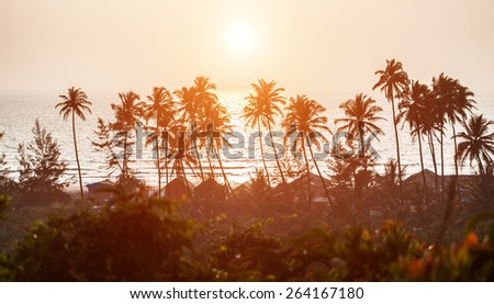Silhouette of palm trees in a beach scene with ocean and clouds gathering during sunset at Goa, India - stock photo