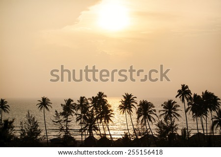 Silhouette of palm trees with ocean and sunset at Goa, India - stock photo
