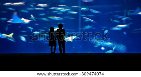 Silhouette of people standing in front of a giant aquarium
