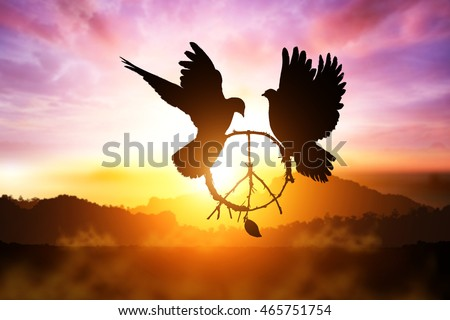 silhouette of pigeon dove holding branch in peace sign shape flying on sunset sky for freedom and peace concept and clipping path and World Peace Day ,international day of peace 2016