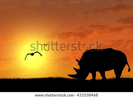 Silhouette of rhino at sunset. The concept of wildlife