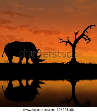 Silhouette of rhino on the background of the night sky with reflection in water and a lone tree - stock photo