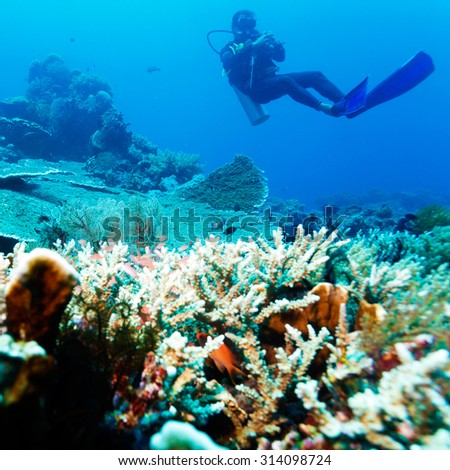 Silhouette of Scuba Diver near Sea Bottom with Copyspace - stock photo