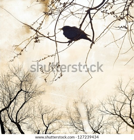 silhouette of small bird on worn paper ; vintage illustration - stock photo
