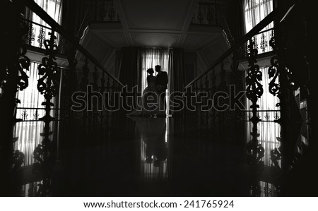 silhouette of the bride and groom at a wedding. - stock photo