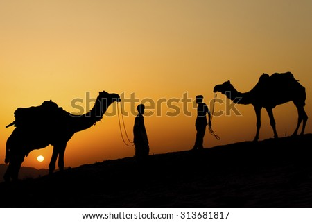 Silhouette of the Camel Trader across the sand dune during sunset  at Sunset Point, Pushkar. Image is soft and contain noise due to high ISO used.
