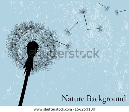 silhouette of the expanding dandelion on a light blue background  - stock photo