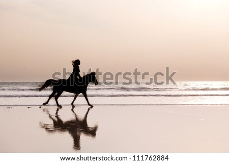 Silhouette of the girl skipping on a horse on an ocean coast on a sunset
