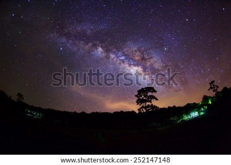 Silhouette of Tree and Milky Way with cloud  - stock photo