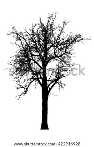 Silhouette of tree with bare branches -illustration