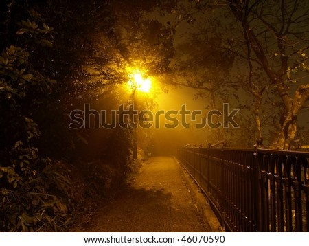 Silhouette of trees in the mist with yellow light streaming from behind at night, The Peak, Hong Kong