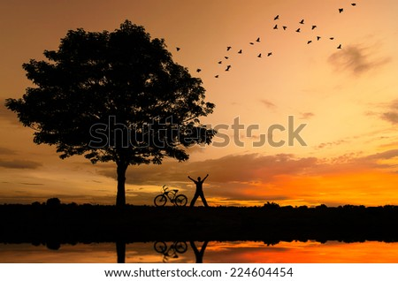 Silhouette of trees, people and bicycles and birds flying, stunning evening sky.