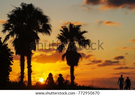 Silhouette of two couples of friends on tropical landscape, palm trees with sunset.