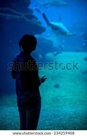 Silhouette of woman in the aquarium. - stock photo