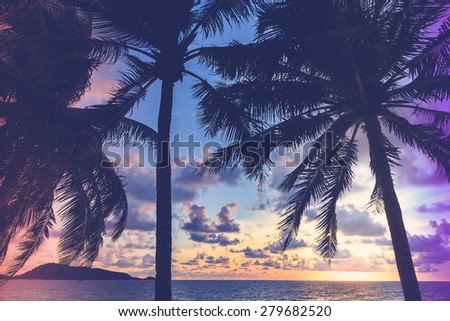 Silhouette palm tree on the beach with sunset - vintage filter and light leak effect processing style - stock photo