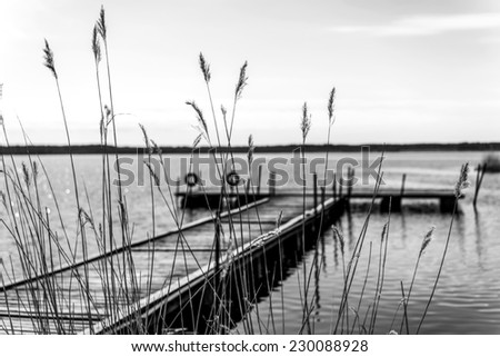 Silhouette pier for pleasure and fishing boats on shore of Lake Ladoga in Karelia. Beautiful Black and white photo with soft focus. In the foreground the tall grass - stock photo