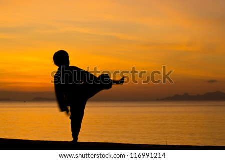 Silhouette taekwondo boy on the beach at dusk. - stock photo