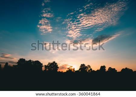 silhouette tree and sunset Before nightfall - stock photo