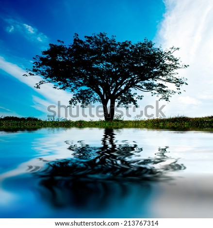 silhouette tree standing upright in the middle of the green grass - stock photo