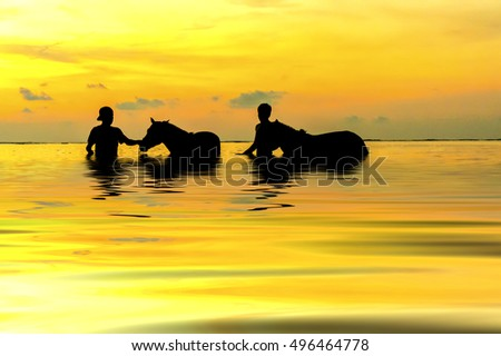 Silhouette two shepherds playing with horse at the  seashore during sunset