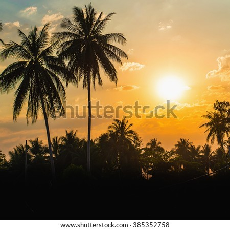 Silhouetted of coconut tree during sunset ,copy space - stock photo