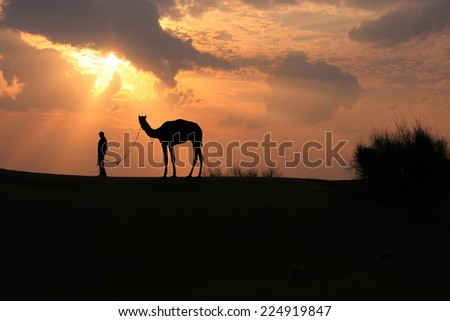 Silhouetted person with a camel at sunset, Thar desert near Jaisalmer, Rajasthan, India