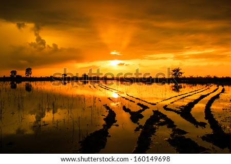 Silhouettes landscape view sunset Water reflection