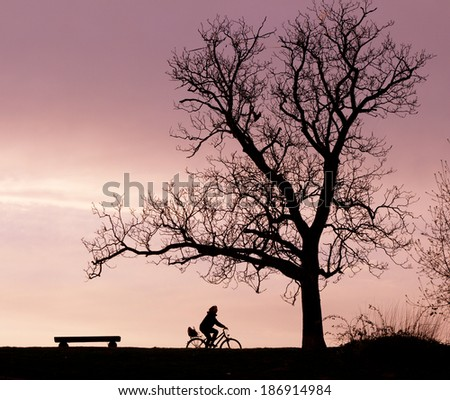 Silhouettes of a bench, a tree and a cyclist in the evening light - stock photo