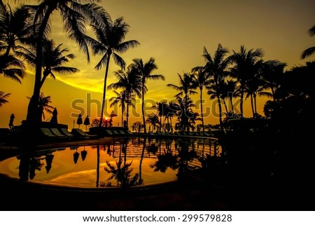 Silhouettes of coconut trees. And reflections from water pool along the sea in the evening.